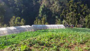 वेमौसमी ताजा तरकारी खेति जिल्ला परियोजना सल्लाहकार समितिको अनुगमन हुलाकटाकुरा (DPAC- Monitoring)